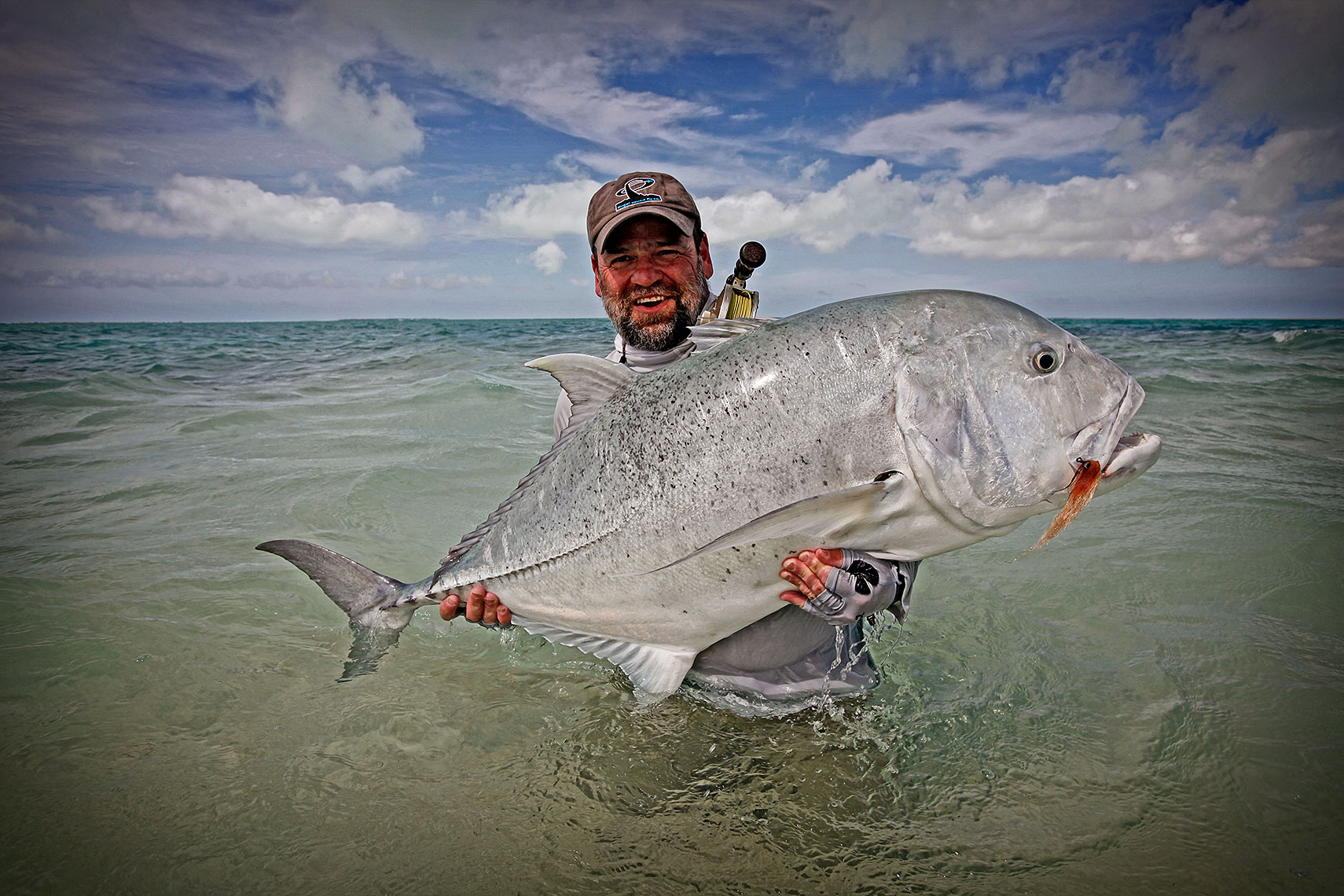 Huge Giant Trevally